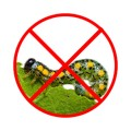 Инсектициды (от насекомых) (67)