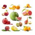 Плодовые (38)