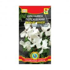Семена Плазмас Цикламен персидский Белый иней, 3 шт.