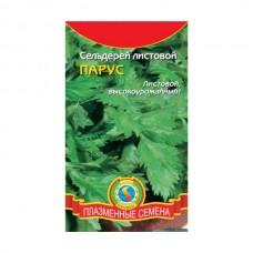Семена Плазмас Сельдерей листовой Парус, 0,5 гр.
