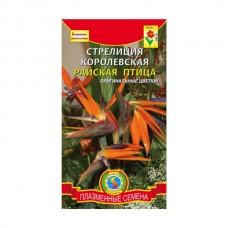 Семена Плазмас Стрелиция Королевская Райская птица, 2 шт.