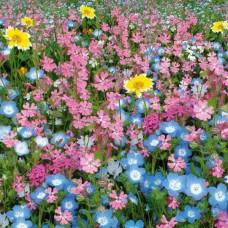 Семена Русский Огород Цветущие газоны Цветущий город Само растет, 30 гр.